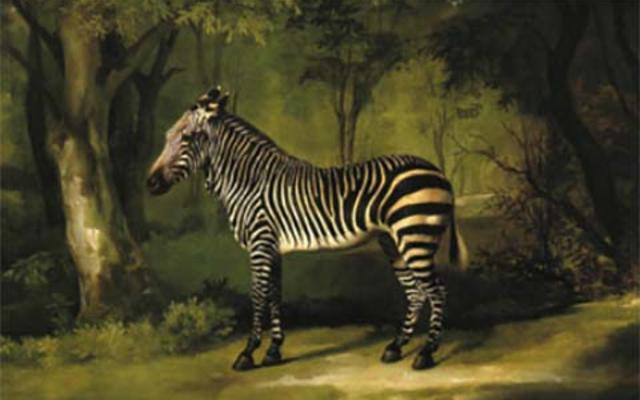 A painting of a zebra in a wood