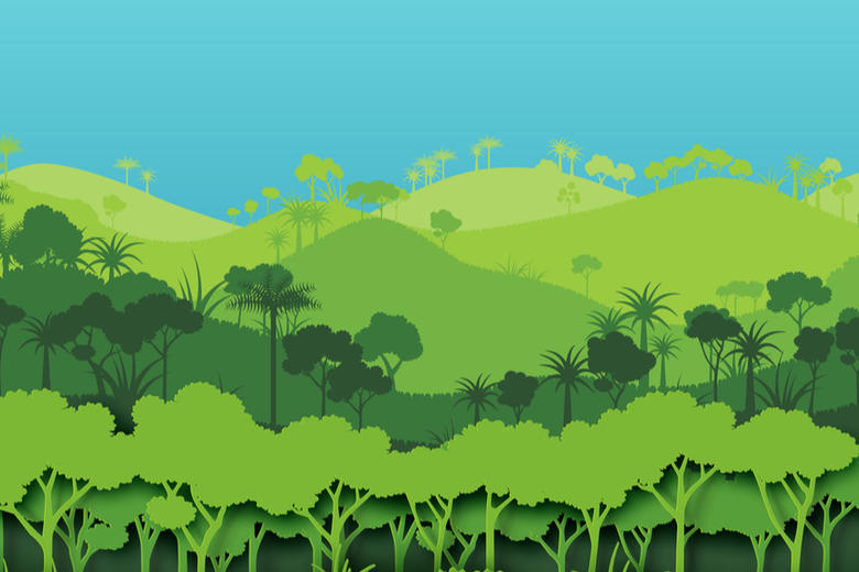 A drawing of forested hills