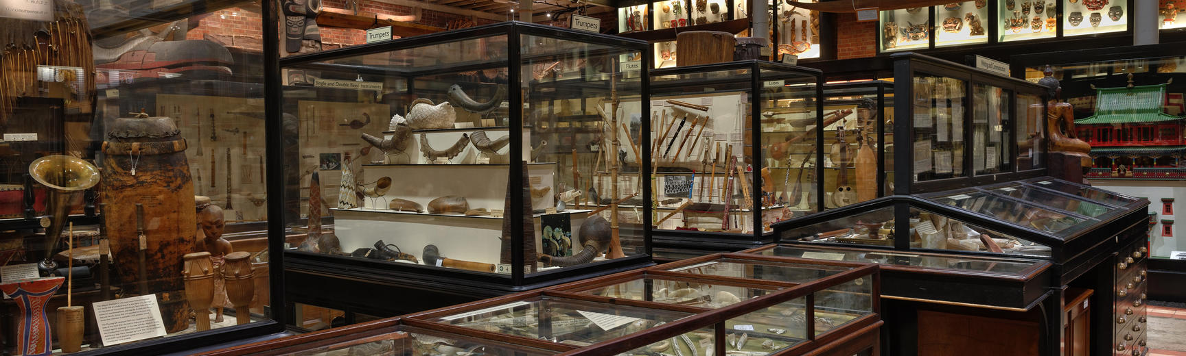 View of display cases in the Court of the Pitt Rivers Museum, Oxford, with objects made from ivory in the foreground and beyond displays of musical instruments  - Oxford University images