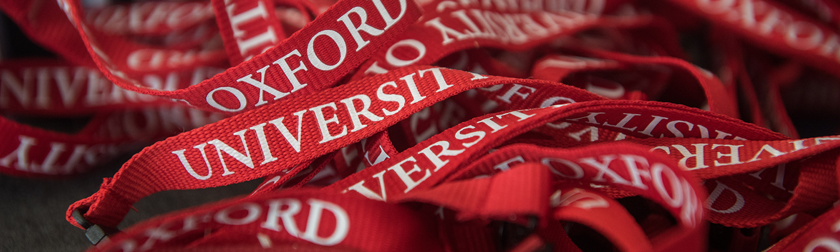 Meeting Minds red lanyards