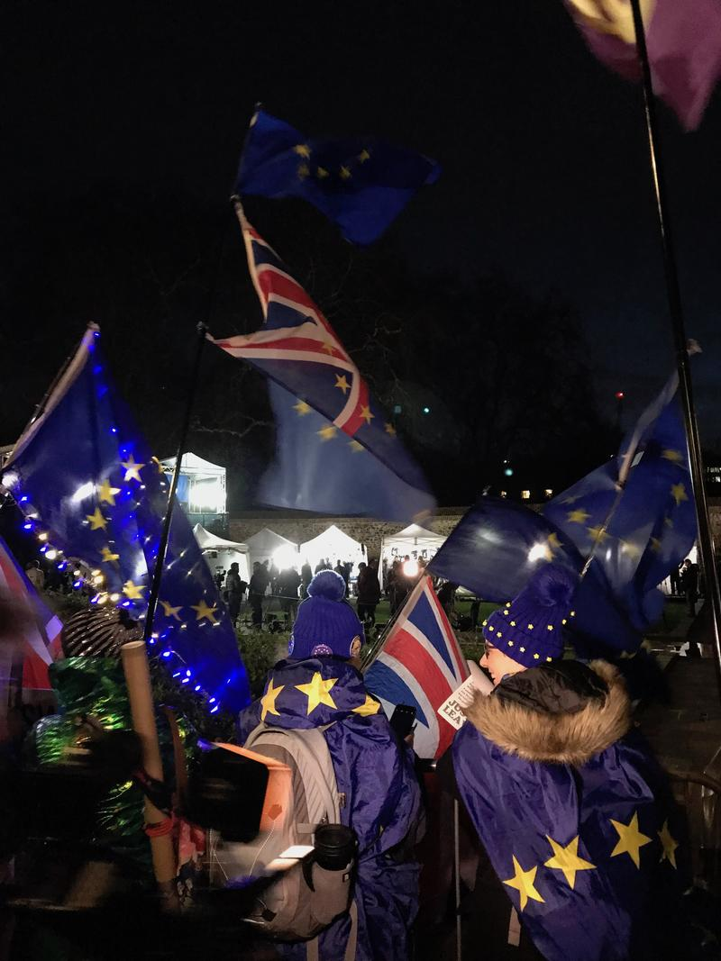 A nighttime scene on an area of grass where a crowd of people are waving EU and British flags