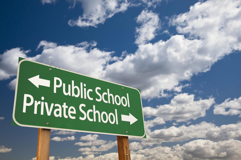 A road sign, with 'Public School' next to an arrow pointing left, and 'Private School' next to an arrow pointing right