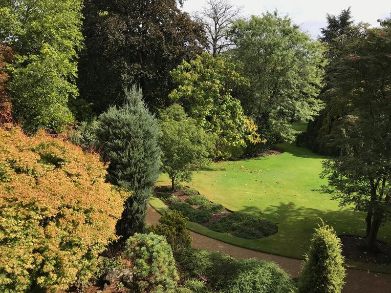 An elevated view of St John's College arboretum