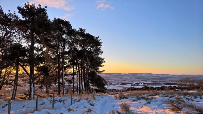 A snowy scene in Scotland, with the sun setting over hills, with coniferous trees in the foreground to the left of the picture, and snow covered moors to the right